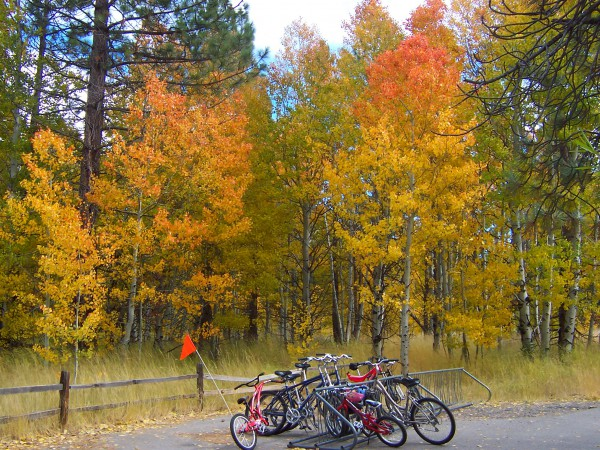 Lake Tahoe and Truckee abound in bike trails, perfect for a ride or a leisurely stroll.