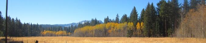 fallen-leaf-meadow
