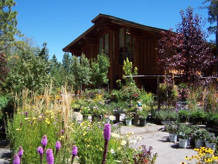 Tahoe Tree Company