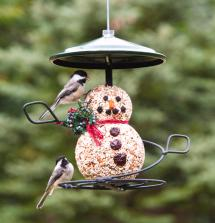2-chickadees-on-snowman